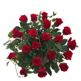 Bouquet assortito di rose rosse a gambo corto musetti for 20x20 costo del mazzo