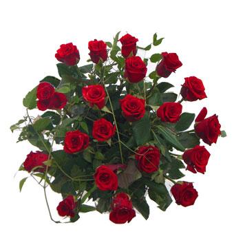 Bouquet assortito di rose rosse a gambo corto musetti for 20x20 costo del mazzo