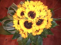 Bouquet girasoli